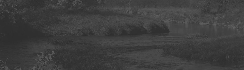 bg_footer_creek.jpg